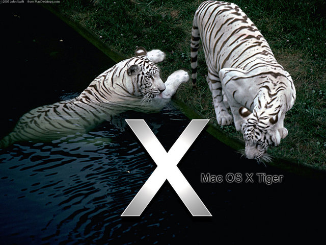 Mac OS X Tiger image